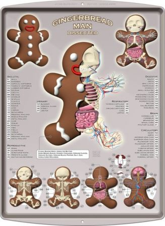 Jason_Freeny_gingerbread_dissection_chirurgie_gateau_cookie.jpg