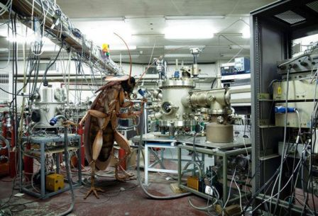 Marc_De_Cunha_Lopes_autoclave_salle_des_machines_parasite_biomed.jpg